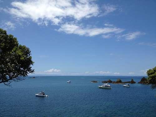 New Zealand Sea Ocean Shore Boats Summer