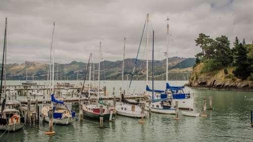 New Zealand Port Navigation Landscape Mountain