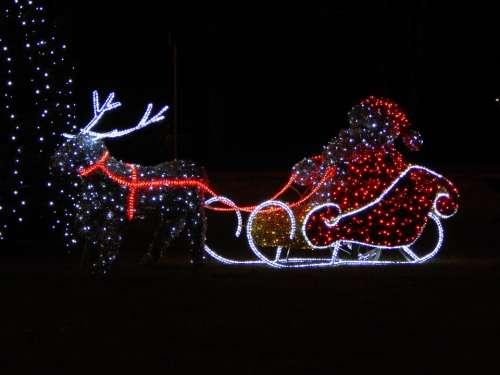 Nicholas Christmas Tree Decoration Reindeer