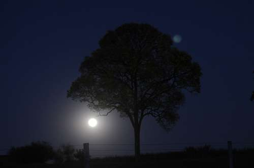 Night Nature Moon Moonlight Nocturne Sky