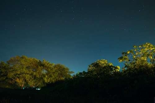 Night Sky Lights Night Blue Long Exposure Trees