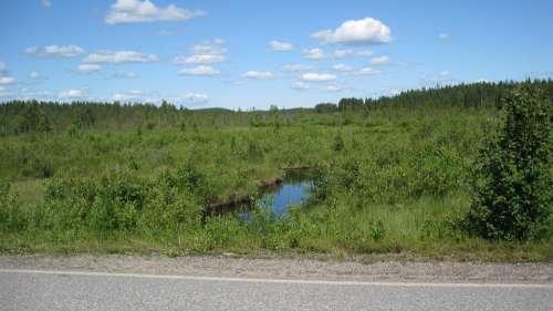 North Karelia Landscape Summer Open Nature Sky