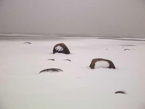 North Sea Winter Silent Snow Ice Nordfriesland
