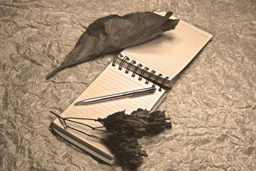 Notepad Dried Leaves Fine Art Light Painting Pen