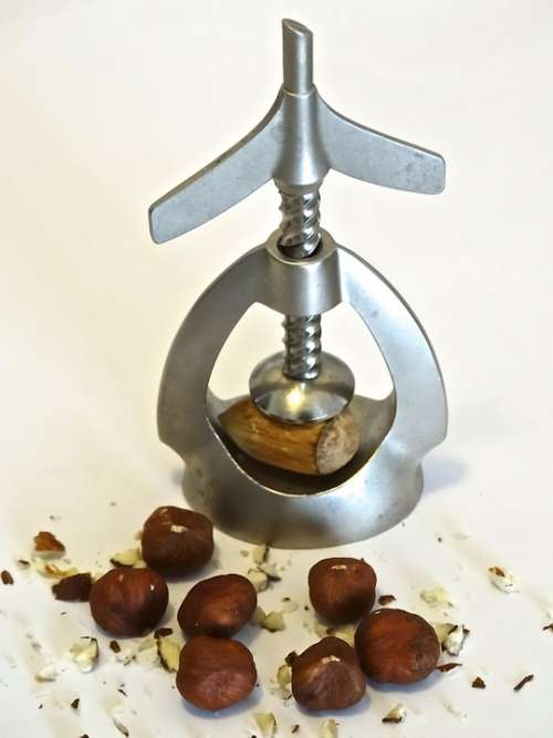 Nutcracker Nuts Hazelnuts Fine Christmas Time