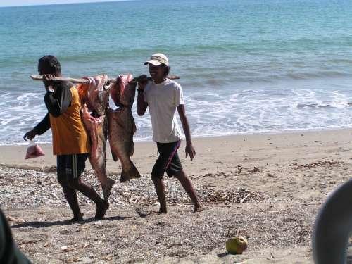 Ocean Fisherman Beach Pacific Sea Fish Water