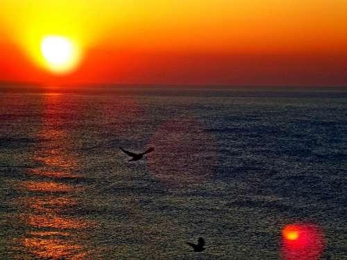 Ocean Sunrise Sea Water Nature Beach Sun