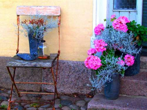 Old Chair Flowers Silent Rest Beautiful Idyll