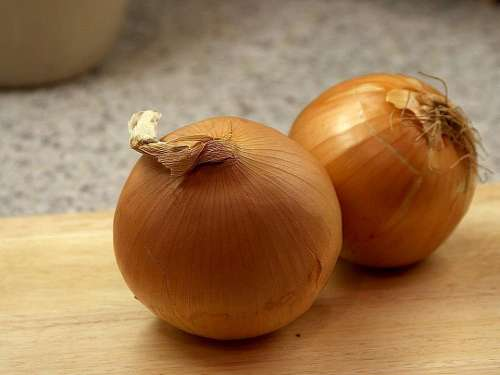 Onions Yellow Onion Vegetables Plants Flora