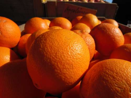 Oranges Orange Close-Up Colorful Sweet Tasty