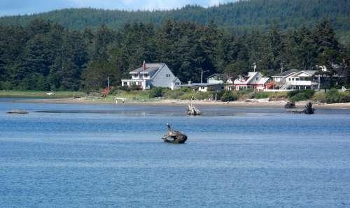 Oregon Shoreline Bay Inlet Scenic Summer