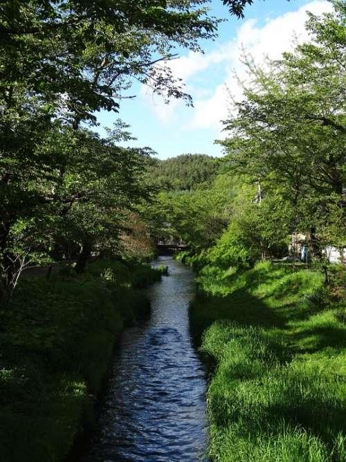 Oshino Hakkai River Clear Stream Fuji