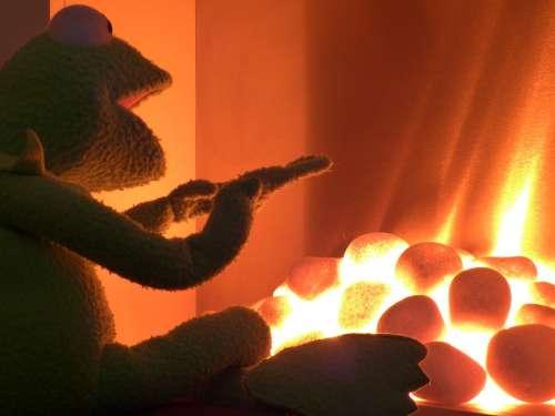 Oven Heat Warm Kermit Frog Glow Doll