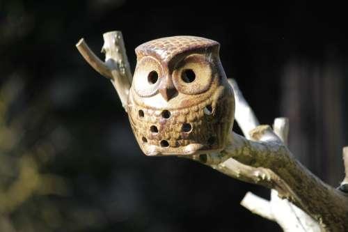 Owl Ceramic Owl Nesting Box Bird Birds Animal
