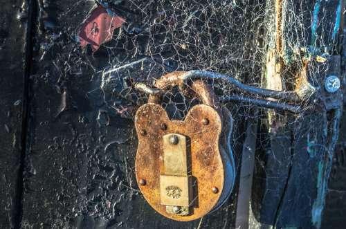 Padlock Gate Locked Private Close-Up Rusty Cobweb