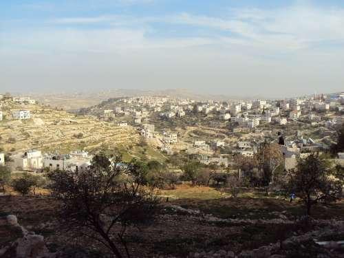 Palestine View City Houses
