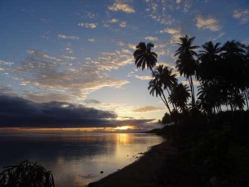Palm Hawaii Vacations Sunset Molokaii Beach Sea