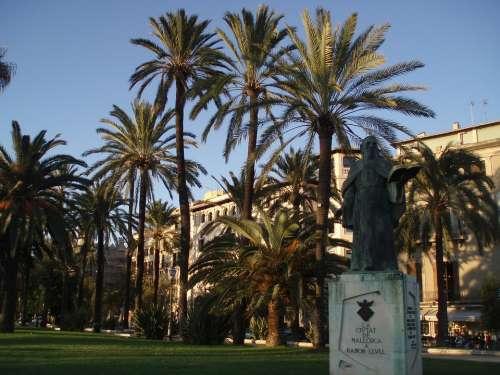Palm Trees Monument Palma De Mallorca Ramon Llull