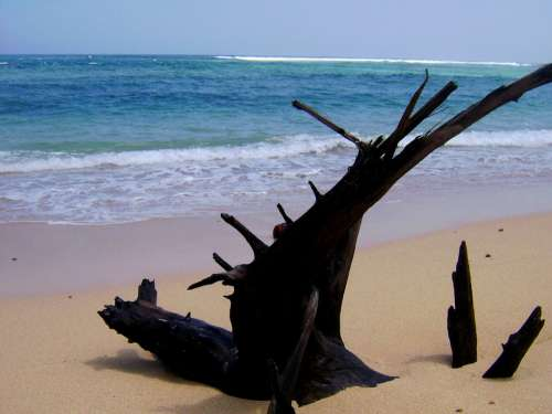 Pantai Nliyep Malang Jawa Timur Indonesia