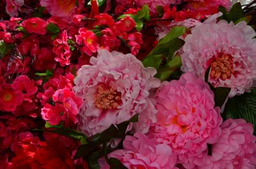 Paper Flowers Market Red Exotic Flowers China