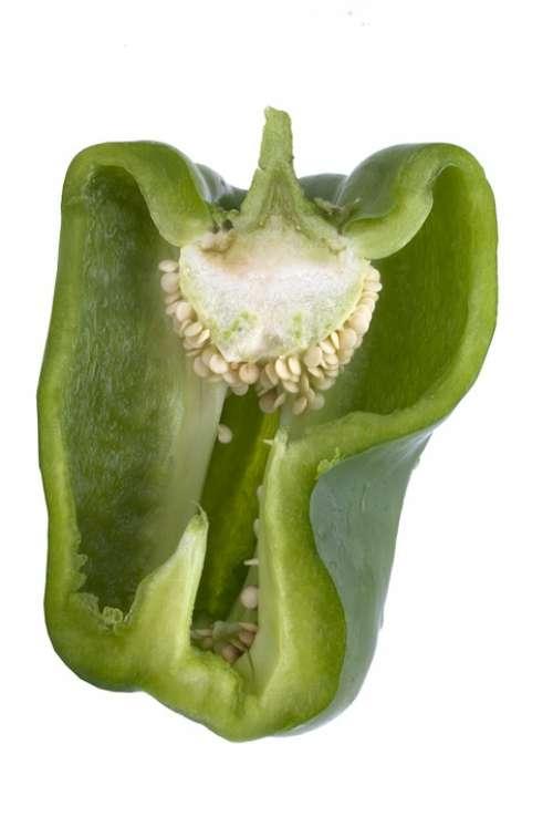 Paprika Vegetables Vitamins Healthy Food Vegetarian