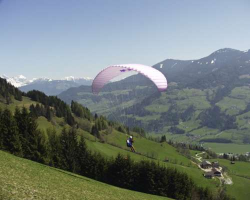 Paraglider Sport Human Person Man Outdoor