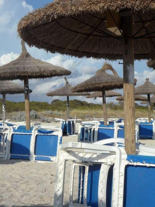 Parasols Umbrella Screens Parasol Concerns