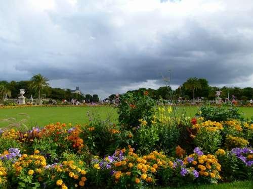 Paris France Jardin Du Luxembourg Flowers Grass