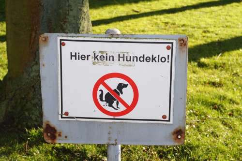 Park Tree Rush Prohibitory