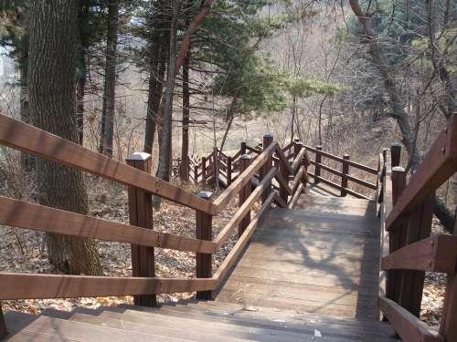 Park Stairs Wood Walk