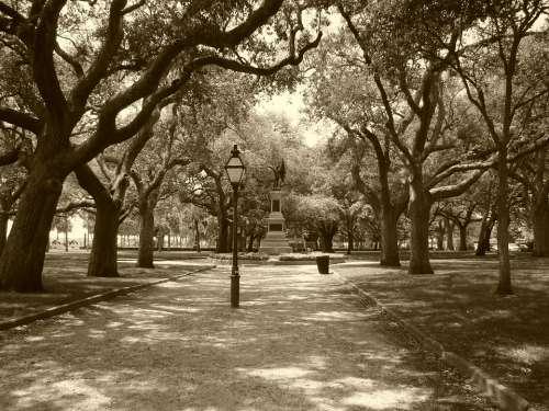 Park Charleston South Carolina