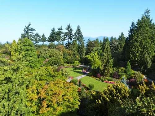 Park Nature Green Trees Plant Leaves Landscape