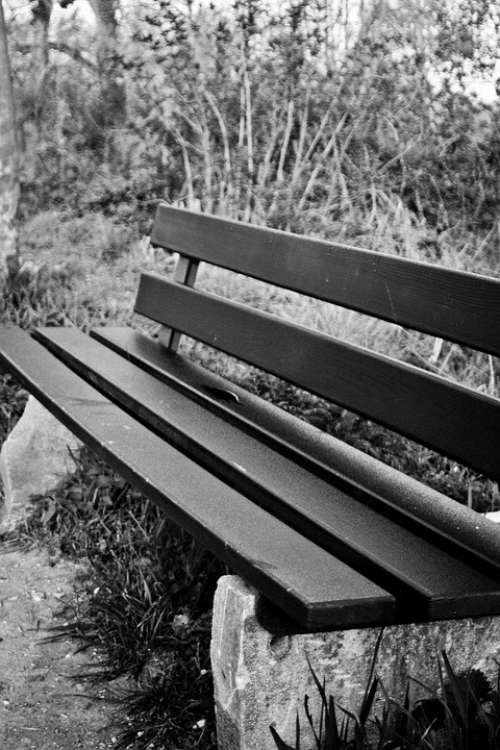 Park Bench Bank Seat Sit Rest Resting Place Click