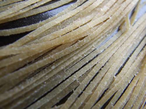 Pasta Strands Cooking Noodle Texture Italian Food