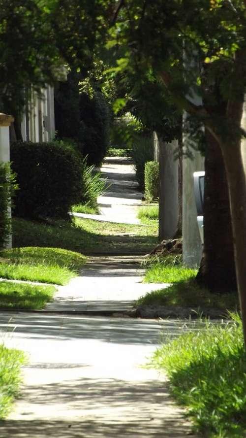 Path Street Stillness