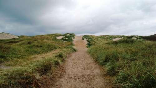 Path Nature Grass Sand Sky Autumn Denmark