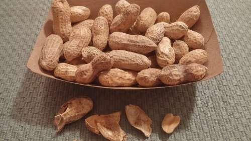 Peanuts Nuts Food Nutshell