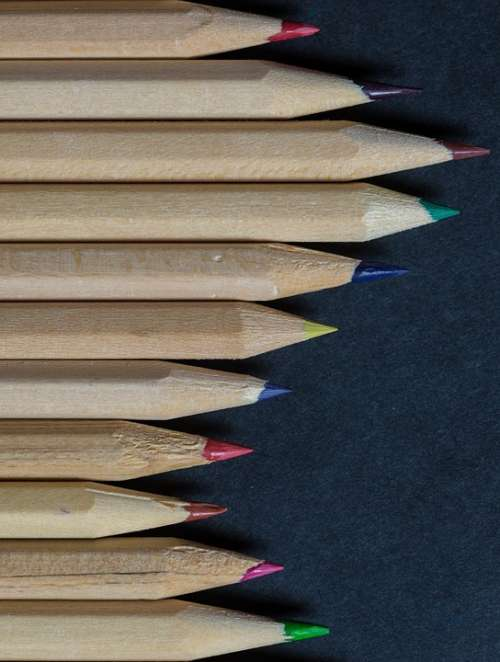 Pencils Colors Lines Wood Forest Instrument