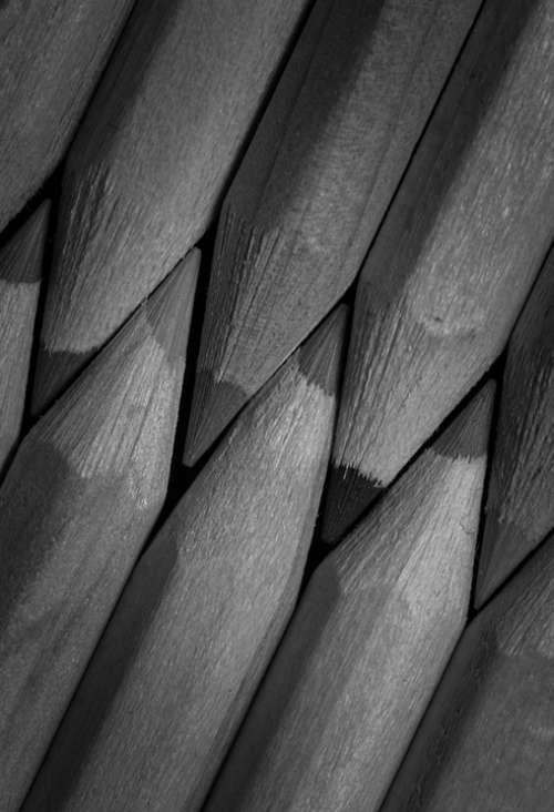 Pencils Colors Lines Wood Forest Instrument