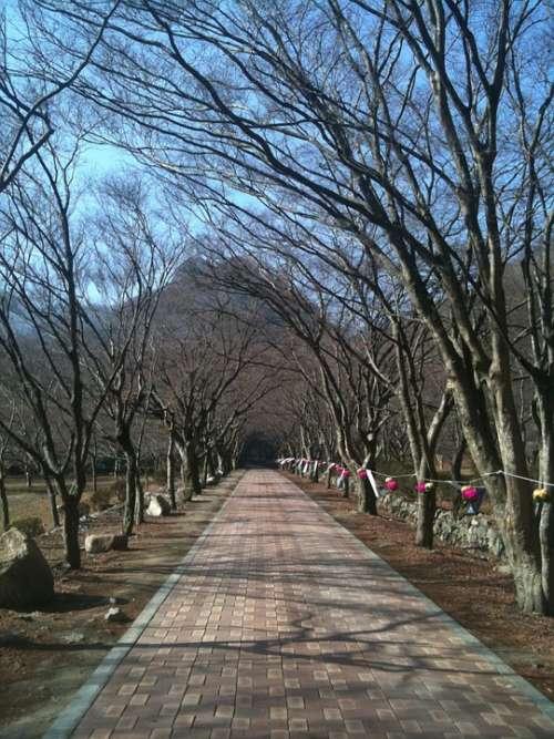 Perimeter Road Trails Republic Of Korea