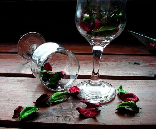 Petals Day Wine Glasses Wooden Desk Green Bright