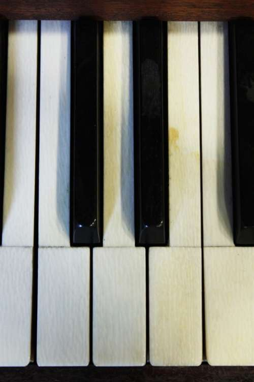 Piano Piano Keys Play The Piano Sound White Black
