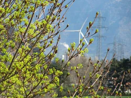 Pinwheel Energy Wind Power Environmental Technology
