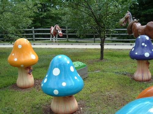 Playful Mushrooms Fun Amusement Playing Whimsical