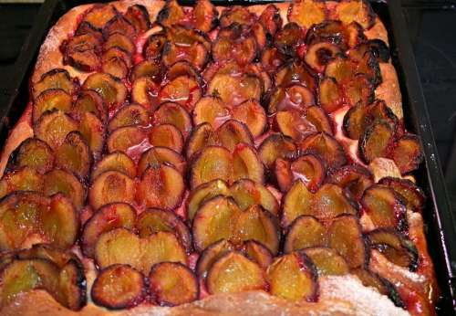 Plum Cake Cake Plums Sweet Dish Dessert Sweet