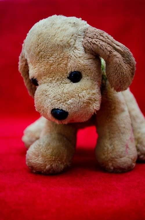 Plush Toy Dog Puppy Soft Toy Teddy