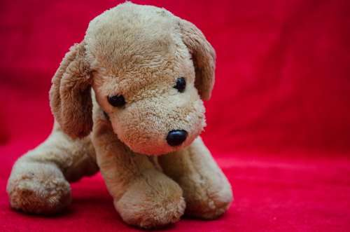 Plush Toys Puppy Soft Toy Dog Cute