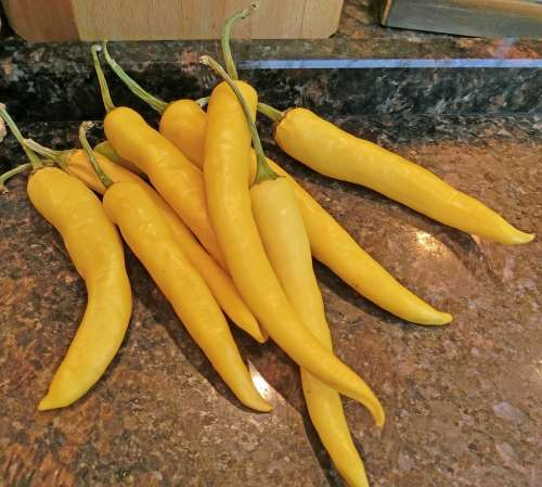 Pointed Pepper Paprika Yellow Vegetables Healthy