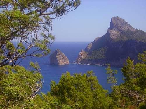 Pollenca Spain Trees Rocks Rocky Sea Ocean Water