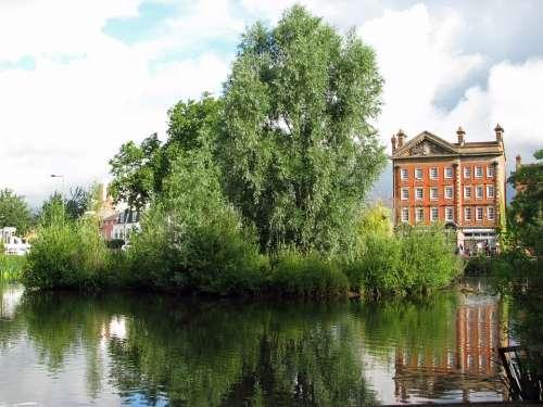 Pond Tree Water Reflection Beautiful Summer Green